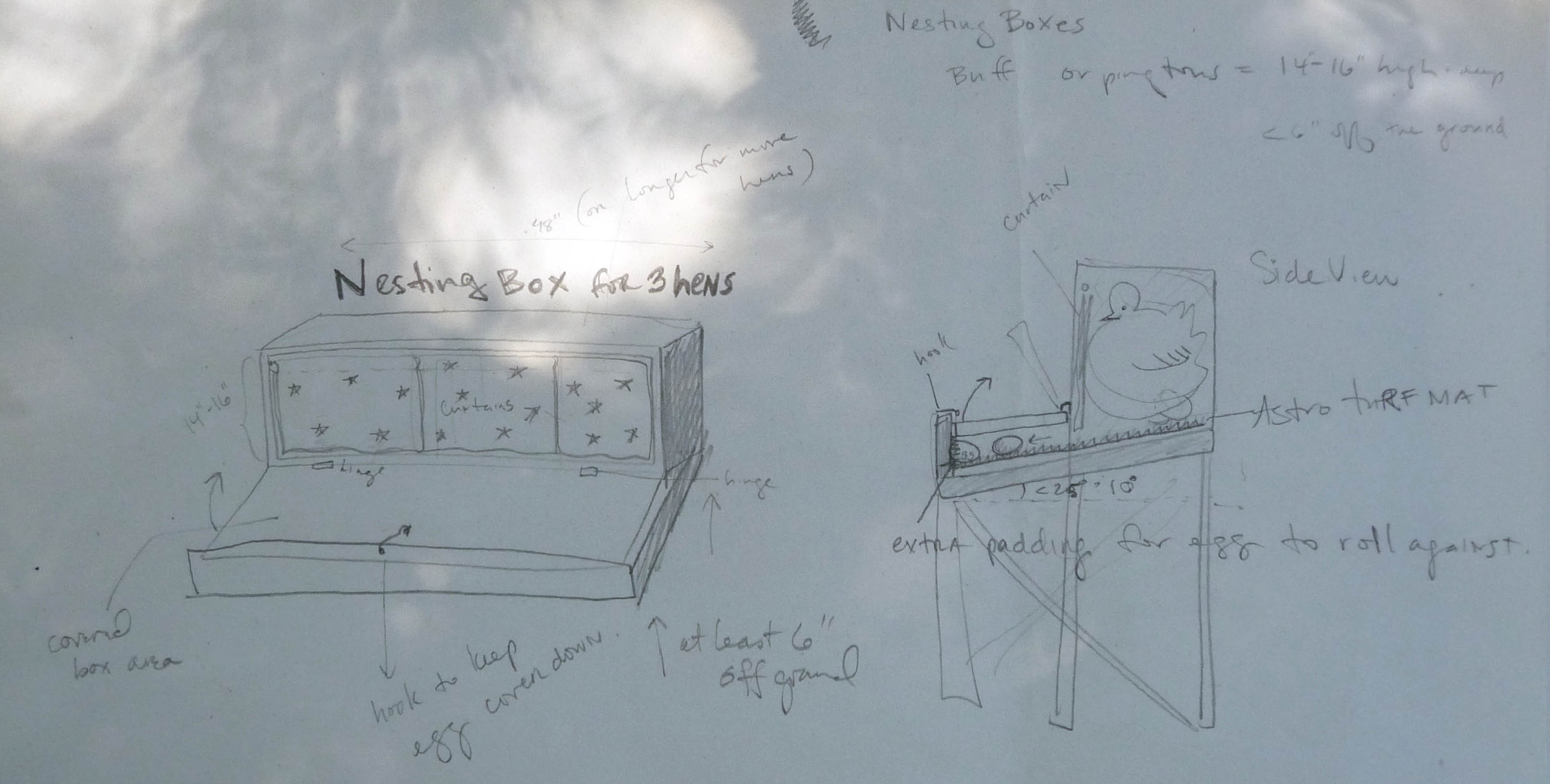 Coop with Simple Egg-Collecting Laying Boxes