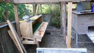 nestingbox built in place